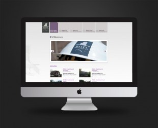 ROZA Immobilien // Website 2011