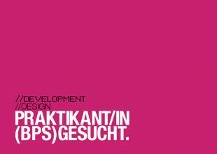 Praktikan/in BPS 2013
